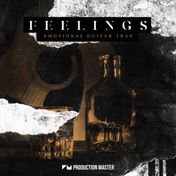 Production Master - Feelings -Emotional Guitar Trap